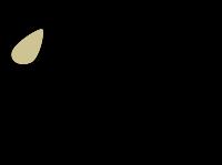 Logo Notre Dame des Amandiers
